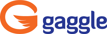 Safe Online Teaching with Gaggle